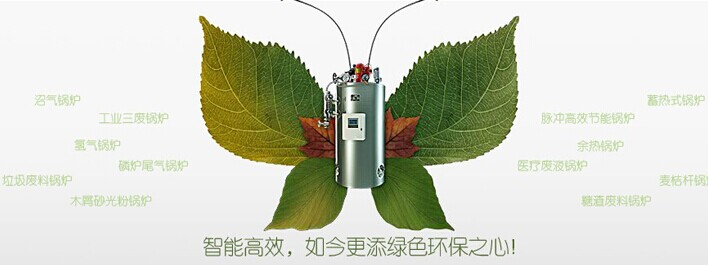 智能型、节能环保锅炉