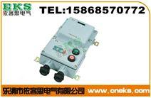山东防爆电磁启动器BQD53-40,BQC53-40