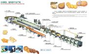 小型食品饼干加工设备/饼干加工设备厂/饼干机械厂/小型饼干机/饼干机械设备厂