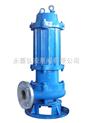 WQP型铸件式不锈钢排污泵 移动式不锈钢排污泵 自动耦合安装不锈钢排污泵