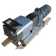 转子泵︱不锈钢转子泵