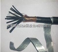 ZR-DJYVP22-24*1.5计算机电缆