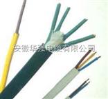 ZR192-KFVP2 10*0.75高温电缆