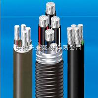 YJLHV22-3*16+1*10铝合金电缆
