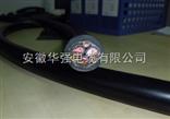 变频电缆BPYJVPX12R-TK厂家