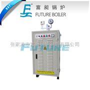 LDR0.05-0.7张家港电锅炉