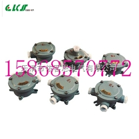 CBJH-G1/2四通防爆接线盒/铸铝防水DN15接线盒