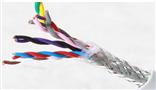 RVVP 2*0.2 屏蔽电缆