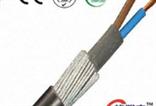 ZR-YJV32 4*10+1*6 铠装电缆