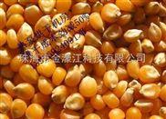 种子烘干机玉米种子烘干设备