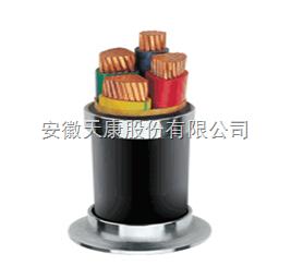 ZR-YJV0.6/1KV-3*95+1*50电力电缆