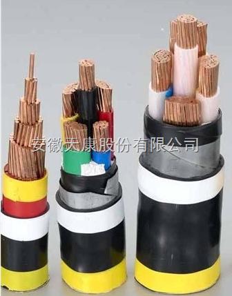 供应天康0.6/1kV VV VV22  VLV VLV22电力电缆