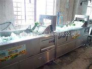 蔬菜清洗机供应商诸城市鑫鼎机械