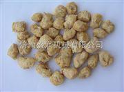 TSE65-s盛润机械大豆组织蛋白素肉加工机器