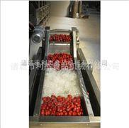 紅棗加工流水線理想的紅棗加工設備