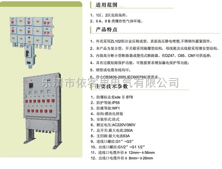 专业订做BDX52-2/50K100XX(IIC铸铝)防爆动力检修箱