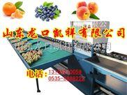 三代水果分选机zui先进的分级水果大小的机器
