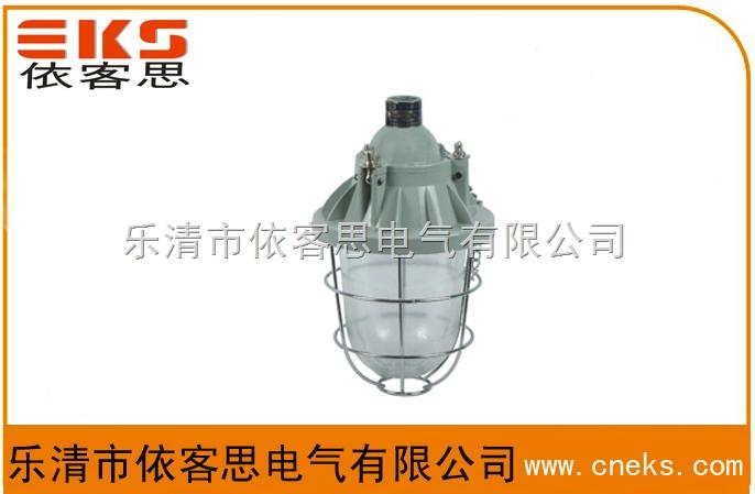 BAD51-L100B1防爆灯(IIB)
