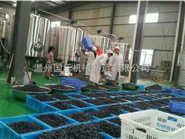 月销6000 果汁饮料生产线 全套果汁灌装生产线