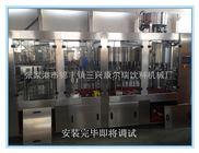 CGF-瓶装矿泉水设备