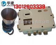 矿用超声物位仪KGU5B
