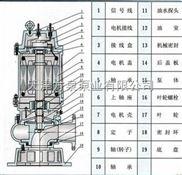 天津铸铁潜水泵,铸铁不锈钢潜水泵