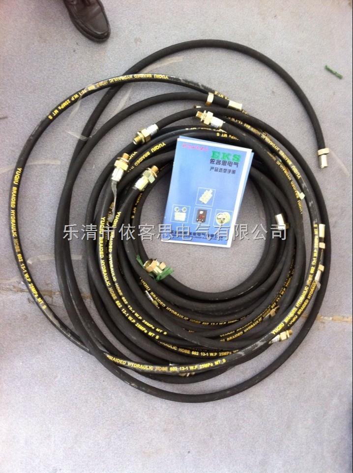 优质LCNG-20*700 G3/4F防爆挠性管/可订制/量大从优