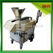 进口多功能蔬菜水果切片切丁机厂家直供价格优惠(大小粗细可调)