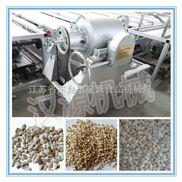 HY-大型气流膨化机