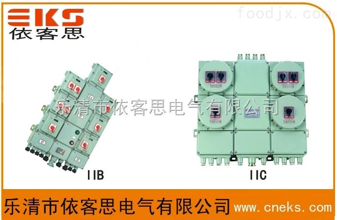 防爆开关箱BEP56-10K(总开225A/分开63A)专业订制