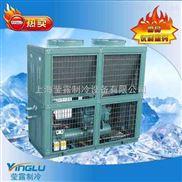 冷库制冷机组 中小型冷库机组 比泽尔箱式风冷冷凝机组40P