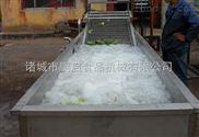 蔬菜清洗機-山東鼓泡清洗機的生產廠家