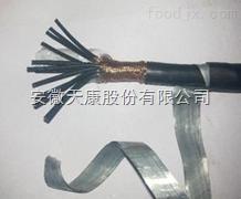 ZR-KVVP22-19*2.5 阻燃钢带铠装控制电缆