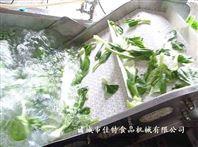 江西香菇清洗机,毛刷式气泡清洗流水线