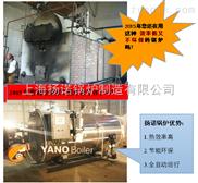 4T燃气蒸汽锅炉 燃煤锅炉改造