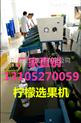 XGJ-NM-柠檬水果分级机 柠檬分选机
