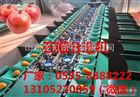 XGJ-SZZ供应石榴分选机厂家直销  特价优惠
