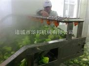 专业生产蒸煮漂烫机 鱿鱼漂烫机 蔬菜蒸煮机