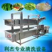 芹菜气泡清洗机哪家专业 ,洗香菜设备低价热销 高压调味菜气泡清洗机厂家