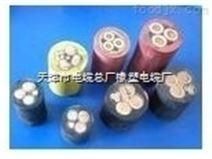 MYPTJ橡套電纜3x95+3x35/3+3x2.5