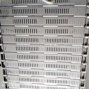 南昌不锈钢链板输送带 304食品行业输送带优质选择