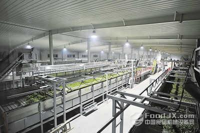 贵州省茶叶生产线成套装备及产品推介会举行
