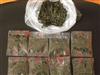 QD-60S钦典主产:碎茶,扁茶,茶自动下料包装机 对茶叶不会损伤