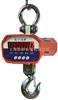 OCS-XZ-A01直视电子吊钩秤、电子吊钩秤