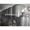 1-100T生物发酵罐