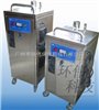 HW-KW-20G不锈钢臭氧消毒机/全自动臭氧灭菌器/食品厂臭氧发生器