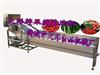 气泡洗果机,气浪式蔬菜清洗机