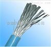 DJVV(R)P3铝塑复合带绕包总屏计算机电缆