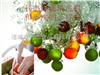 LJ-4500苹果清洗机多少钱 洗水果机哪家专业 利杰食品机械专业制造商